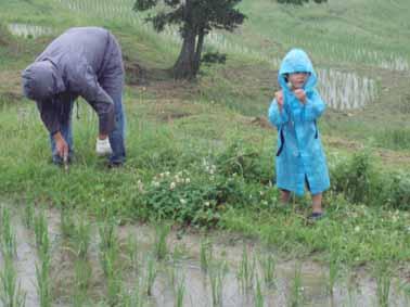 雨に濡れる親子
